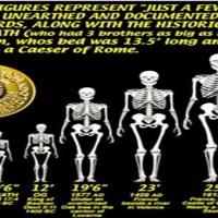 Gigantes e Humanos Híbridos