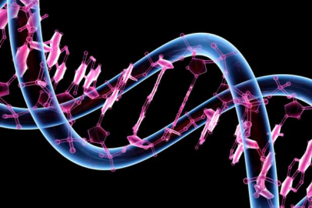 Os seres humanos são o resultado de engenharia artificial de acordo com ciência e textos antigos 2