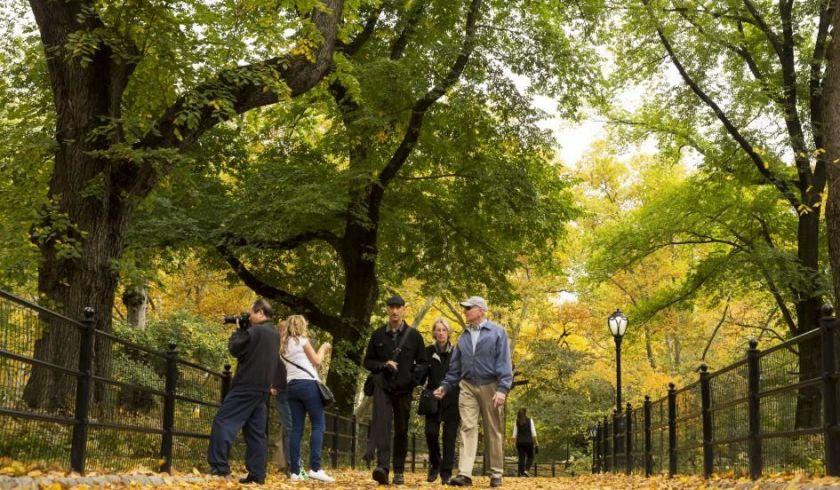 Passar o tempo na natureza pode melhorar a coesão social, diz estudo 2